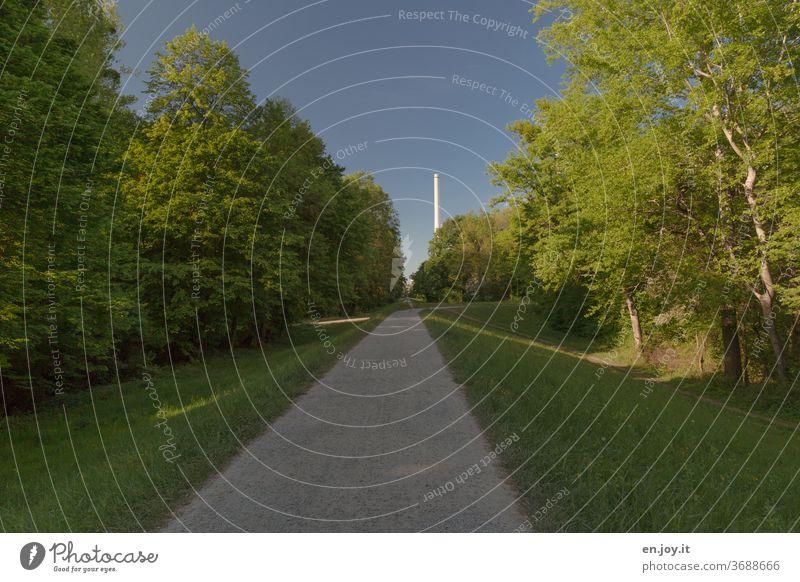 auf dem Damm sein Rheindamm Wall Wehr grün Weg Pfad Spazierweg Kiesweg Hügel Wald mittig Mitte blauer Himmel Wolkenloser Himmel Kamin Schornstein Menschenleer