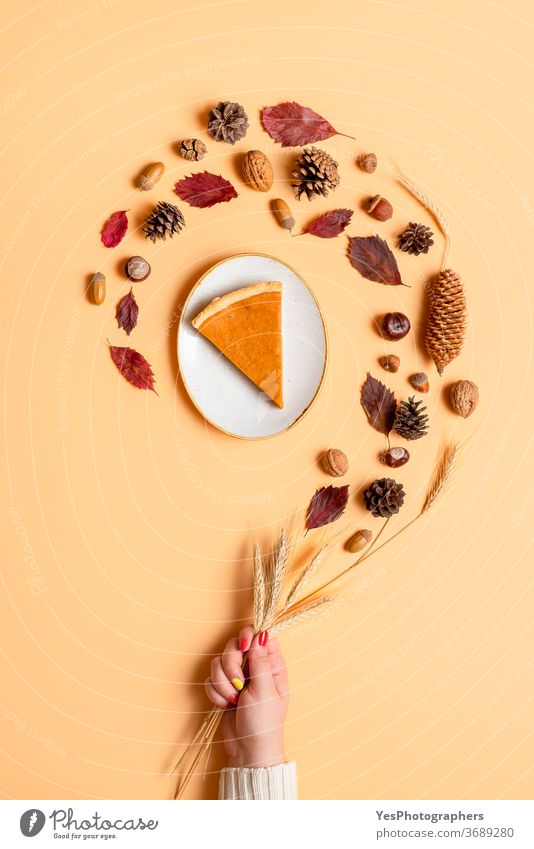 Herbstliche Komposition mit Kürbiskuchen und Waldobjekten. Konzept zum Erntedankfest November Oktober obere Ansicht Eicheln Hintergrund beige braun Farben