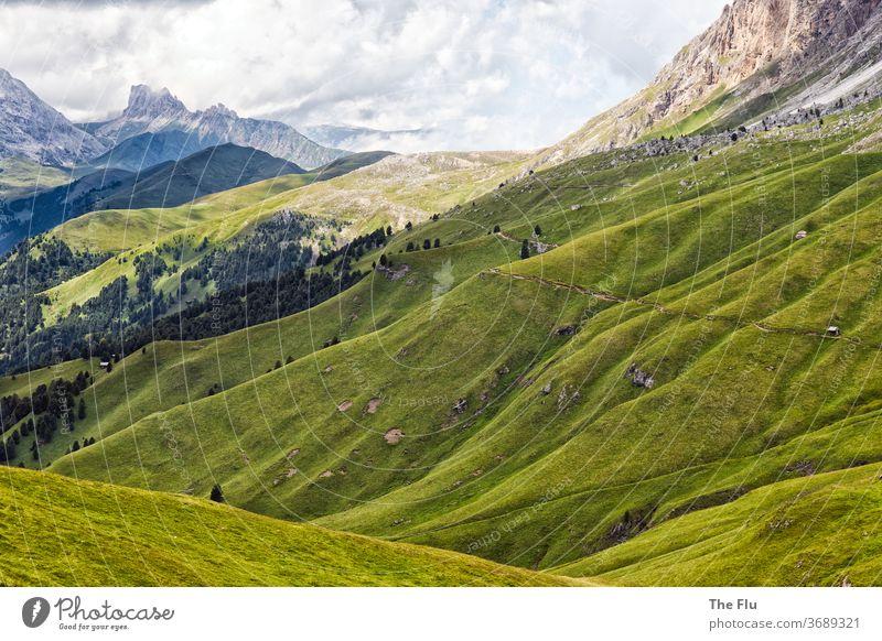 Sommer in den Dolomiten Alpen Alm Berge u. Gebirge Wiese Wolken Natur Himmel Felsen Gipfel wandern Südtirol Panorama (Aussicht) Ferien & Urlaub & Reisen