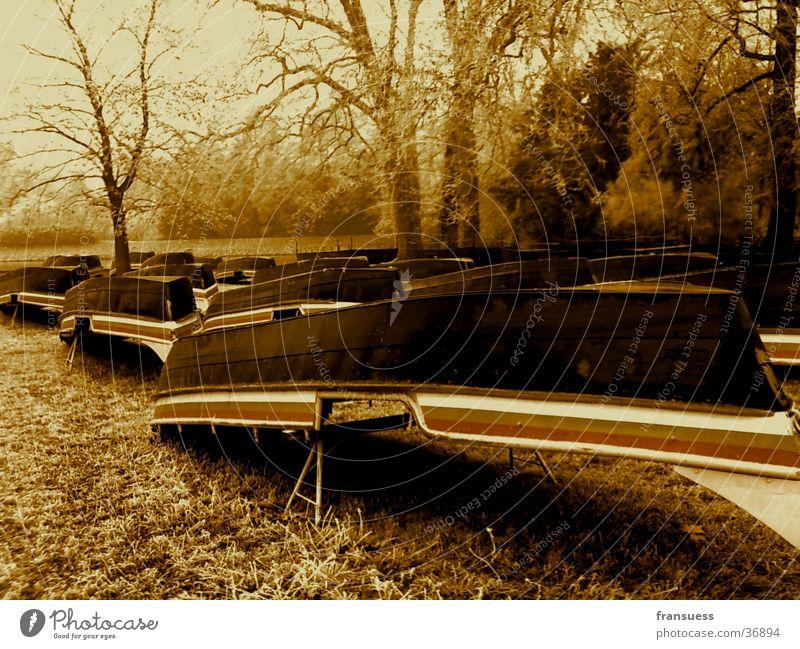 Boote Baum Frost Wörlitzer Park