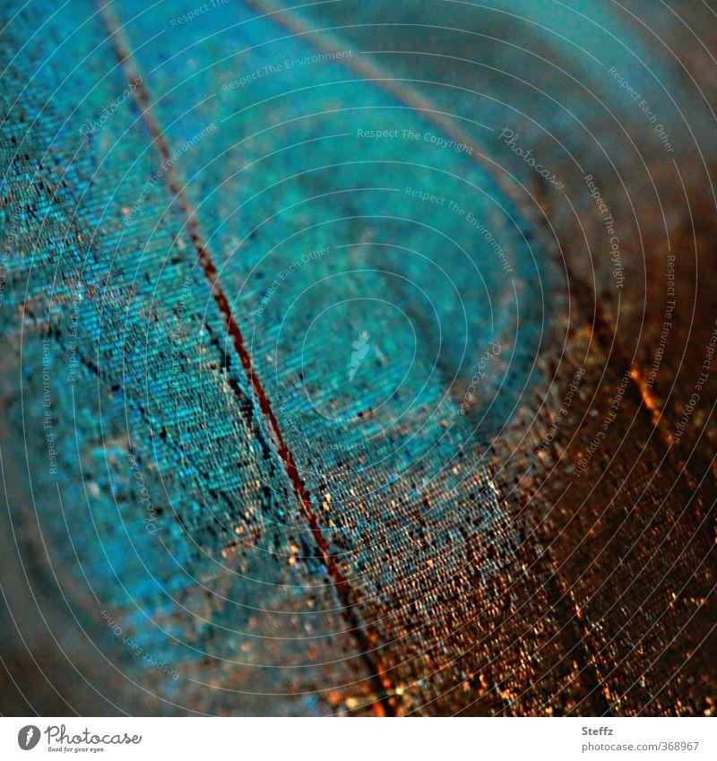 Lebewesen Natur Tier Schmetterling Flügel Blauer Himmelsfalter Morphofalter Edelfalter Augenfalter Augenflecken ästhetisch natürlich blau Design einzigartig