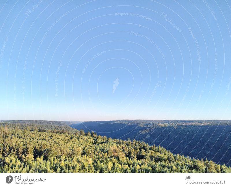 Bild von Aussichtsturm über Nordschwarzwald Schwarzwald, Landschaft Wald Natur Außenaufnahme Menschenleer Himmel Hügel Sommer Schönes Wetter Textfreiraum oben