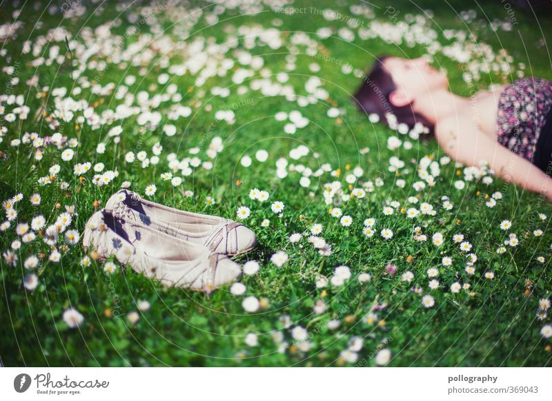 time-out Mensch Frau Natur Jugendliche Sommer Pflanze Erholung Landschaft Blume ruhig Freude Junge Frau Erwachsene Umwelt Wiese Leben