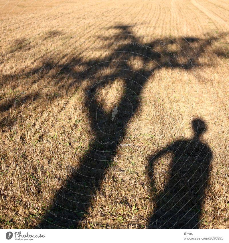 Schattentheater (6) mann schatten bewegung skurril sonnig sonnenlicht schattig acker landwirtschaft baum stehen