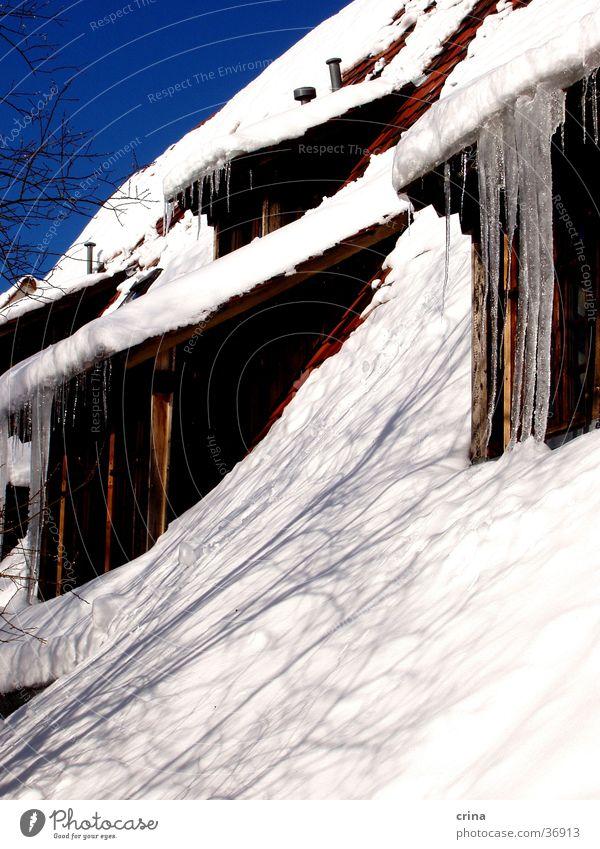 Haus im Winter weiß Schnee Eis Dach Häusliches Leben Eiszapfen