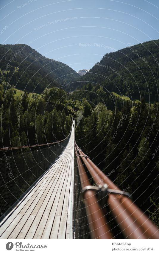 Hängebrücke Berge Wald Natur Alpen Sehenswürdigkeit Schweiz wallis grün braun Himmel Blauer Himmel