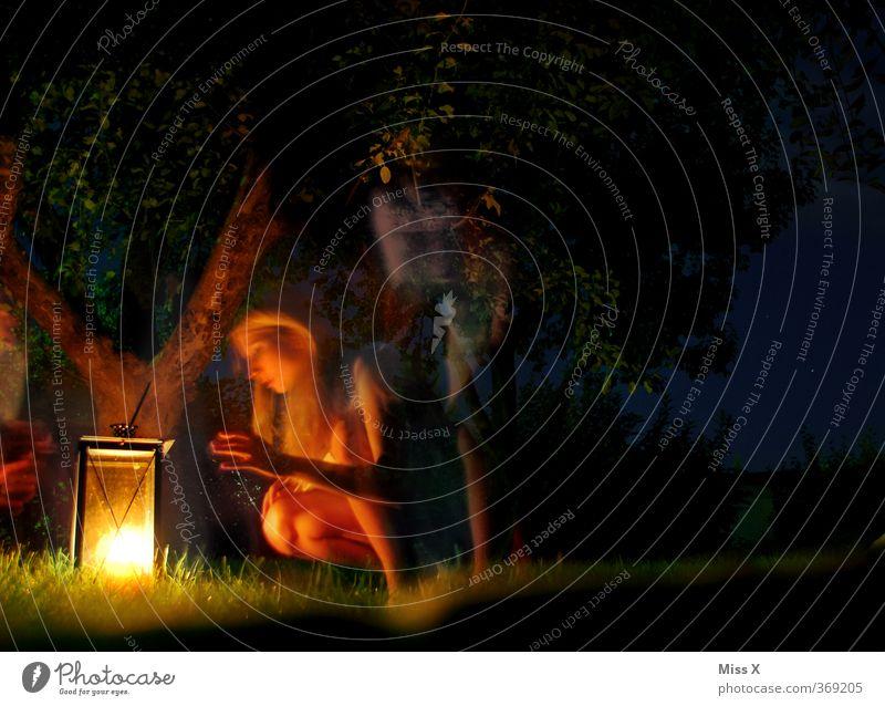 Waldgeist Mensch Frau Jugendliche Sommer Baum Junge Frau Erwachsene 18-30 Jahre feminin Gefühle Garten Angst Straßenbeleuchtung gruselig Camping Geister u. Gespenster