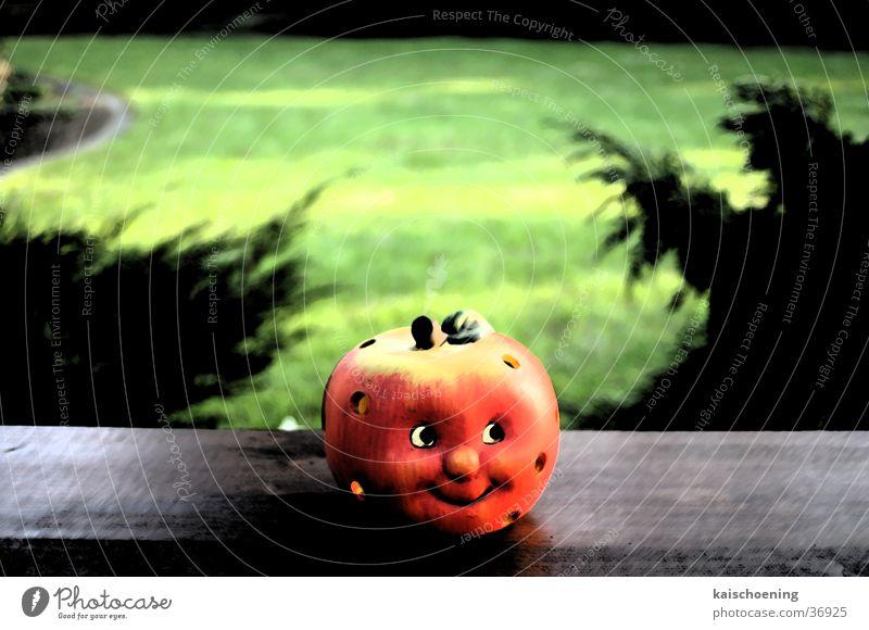 Apfelshadow Windlicht grün Teelicht Tanne Anlegestelle Schatten Garten Schöning Außenaufnahme