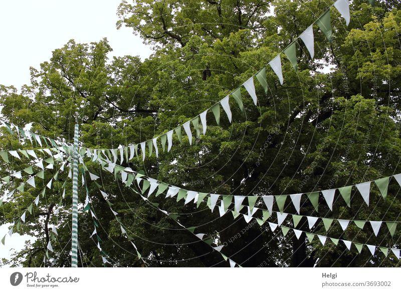 Party - viele Girlanden mit grün-weißen Fähnchen hängen über einem Dorfplatz Dekoration Feier Fest Schmuck Pfahl Baum Partylaune Feststimmung