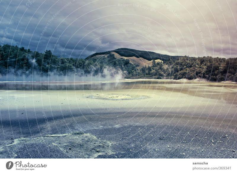 mystisch Ferien & Urlaub & Reisen Tourismus Ausflug Abenteuer Freiheit Umwelt Natur Landschaft Urelemente Himmel Wolken Park Hügel Rauchen wild Neuseeland