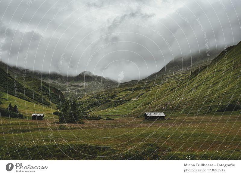 Nebelschwaden über den Bergen Serfaus-Fiss-Ladis Österreich Alpen Täler Landschaft Natur Hüttenferien Berghütten Holzhütten Gras Bäume Weide Wiese Felsen