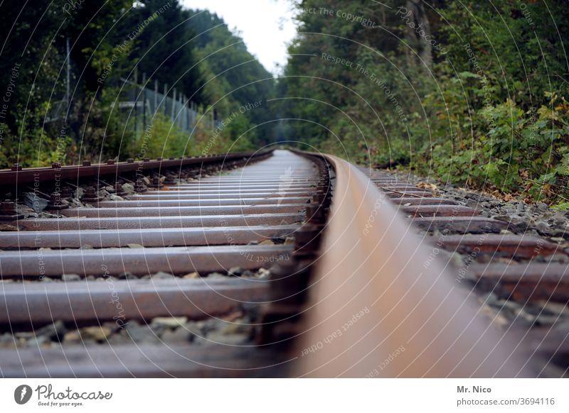 Eisenbahnstrecke durch den Wald Eisenbahnschwelle Schienenverkehr Gleise Verkehr Verkehrswege Verkehrsmittel Bahnfahren Schienennetz Güterverkehr & Logistik