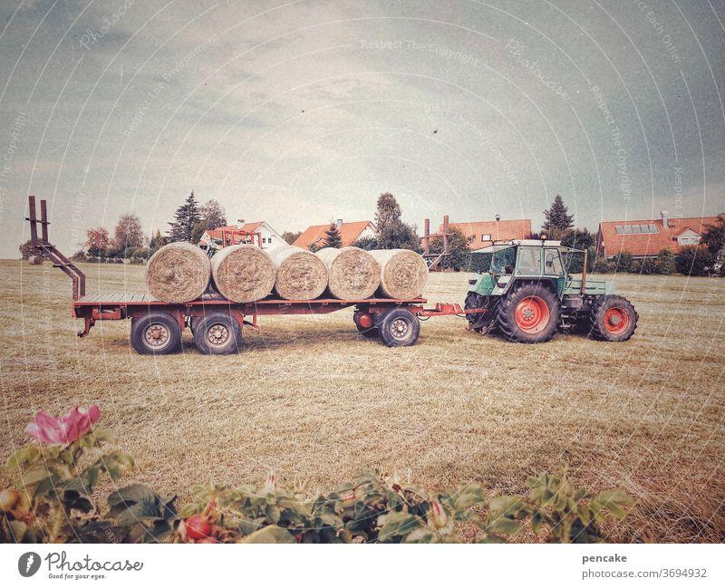 just in time Heu Traktor Gabelstapler Landwirtschaft Heuballen Gewitterstimmung Bauernhof Ernte rechtzeitig Wiese mähen Feld Sommer Umwelt ländlich