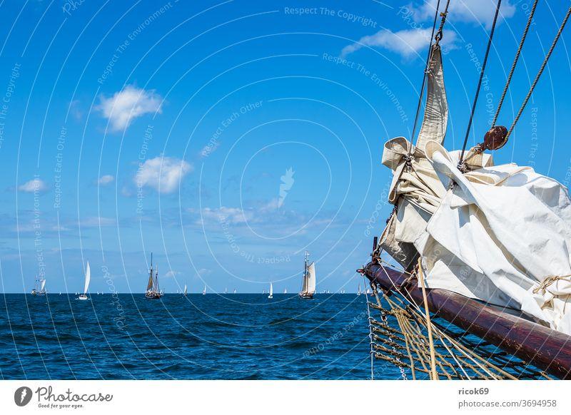 Segelschiffe auf der Hanse Sail in Rostock Windjammer Warnemünde Ostsee Meer Küste maritim Seefahrt Schifffahrt segeln Ostseeküste Himmel Wolken blau Wasser