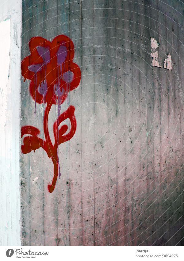 Blume Graffiti streetart Wand Beton grau rot Wandmalereien Symbole & Metaphern