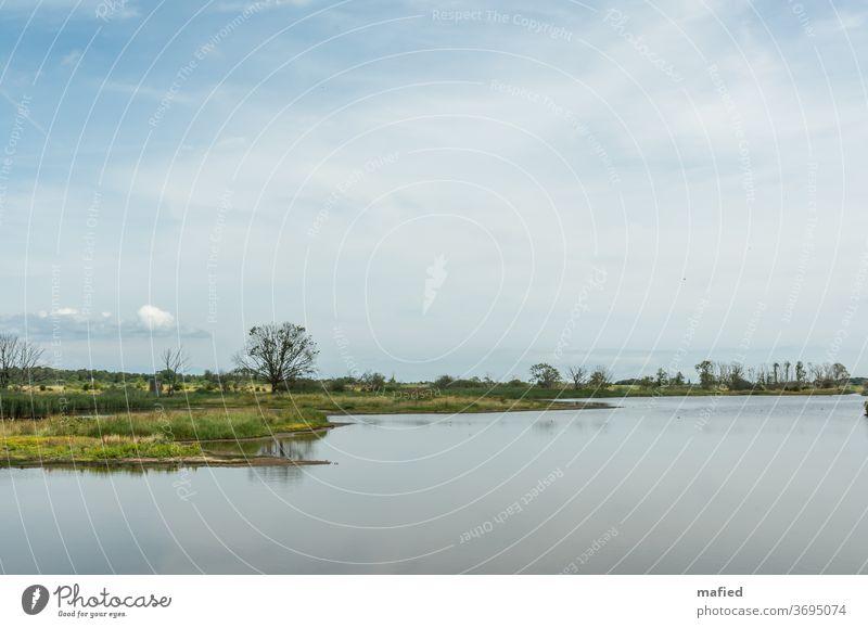 Sommertag im Naturschutzgebiet Geltinger Birk Landschaft Wasser Schönes Wetter Außenaufnahme Menschenleer Himmel Gedeckte Farben ruhig Tag grün blau Erholung