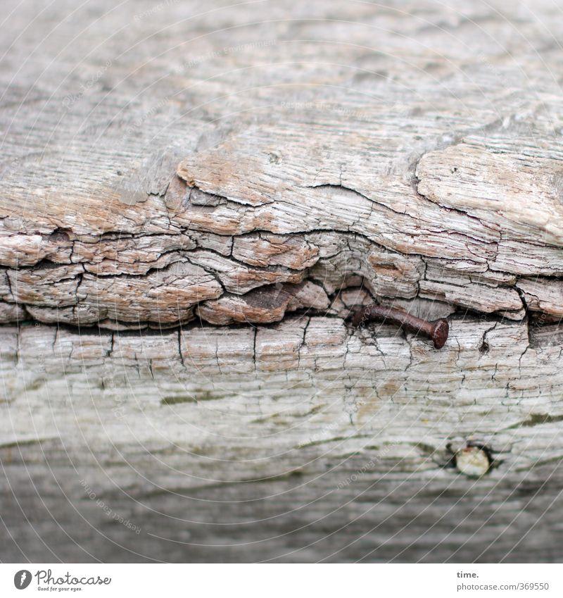 wetterfühlig alt nackt Holz Metall kaputt Vergänglichkeit Wandel & Veränderung einzigartig geheimnisvoll historisch Vergangenheit Verfall entdecken Rost Riss