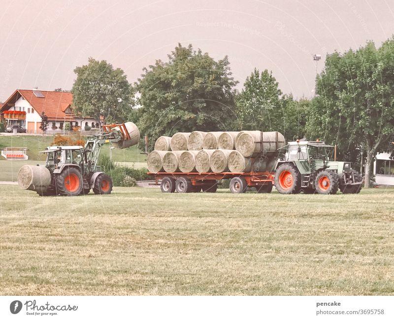 systemrelevant | gesunde Landwirtschaft ländlich Gras Heu Heuballen nachhaltig Traktor Ernte Kreislauf der Natur Wiese Bauernhof Sommer Futter Feld Umwelt