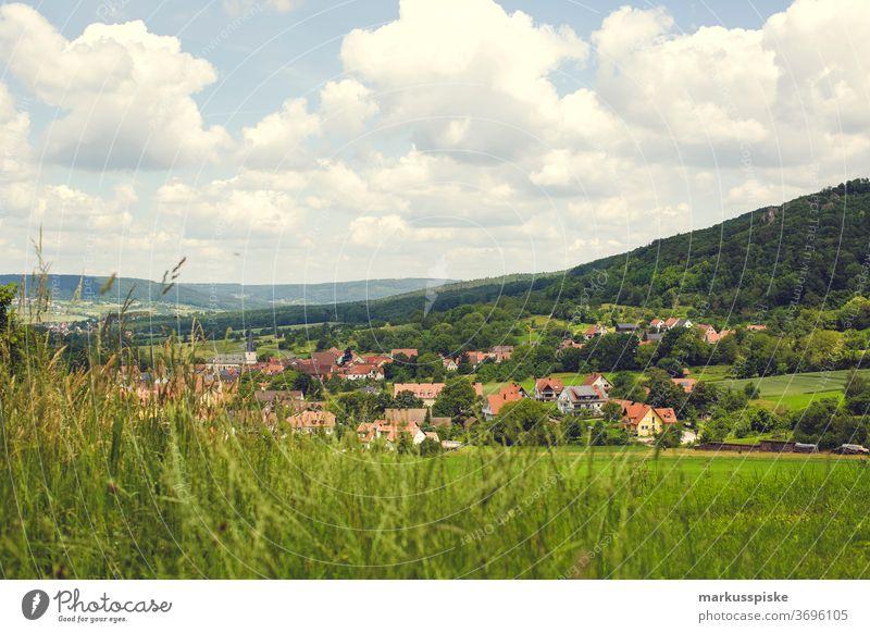 Leutenbach in der Fränkische Schweiz Oberfranken Bayern dorf Urlaub wandern Hügel Berghang Berge Wiese Wiesenblume Sommer Sommerurlaub sommerlich