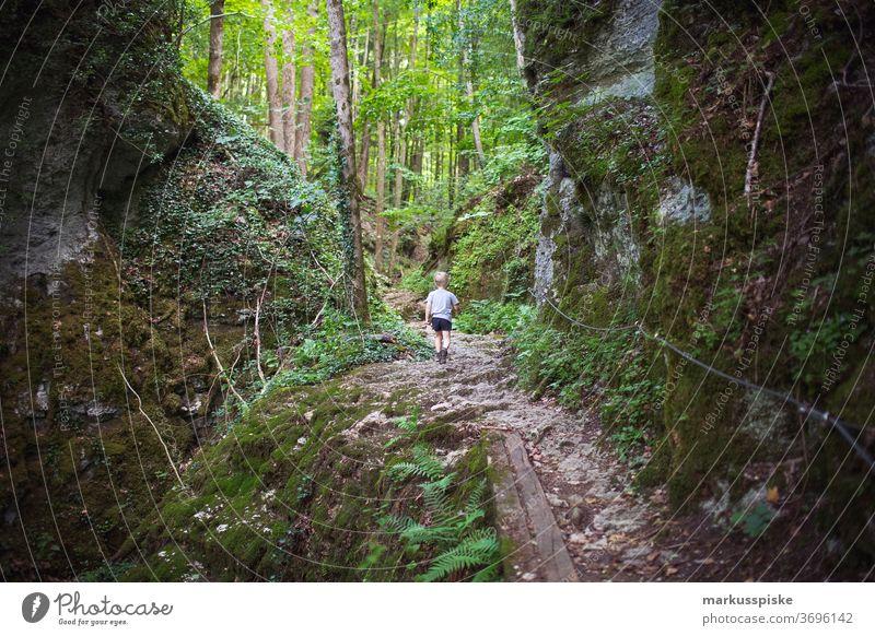 Wanderweg Naturpark Fränkische Schweiz Oberfranken Berg Kultstätte Brauchtum Wanderziel Wandern Entdecken Genuss Biergarten Veldensteiner Forst Hochplateau