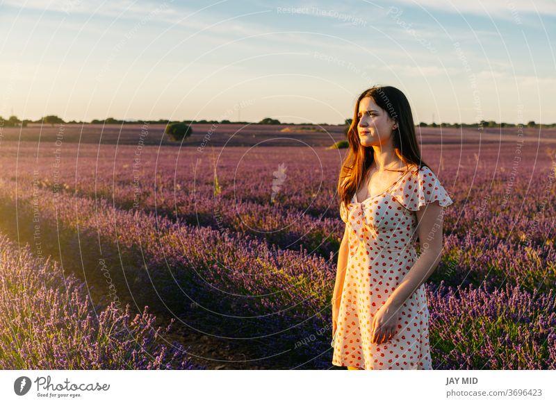Eine Frau in einem Kleid geht bei Sonnenuntergang durch ein Feld mit blühenden Lavendeln. Während der Sommerferien schön Natur Blume natürlich laufen Freiheit