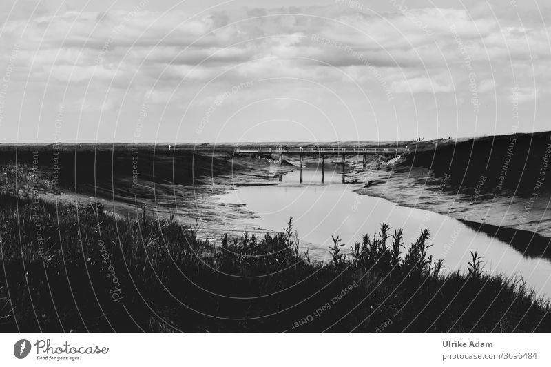 Naturentdeckungspfad  Langenwarder Groden in Butjadingen an der Nordsee - UNESCO Weltkulturerbe Wattenmeer Fedderwardersiel Reisen Nordseebad Siele Wolken