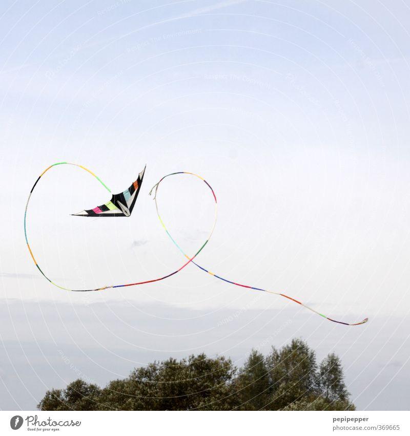 brezel-looping Himmel Natur Sommer Baum Freude Wolken Wiese Spielen fliegen Park Freizeit & Hobby Feld Fröhlichkeit Ausflug lernen sportlich