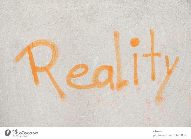 """""""Reality"""" steht mit orangefarbener Schrift auf der grauen Wand Realität Meinung Graffiti Lifestyle englisch Fassade Schriftzeichen Mitteilung Hinweis"""