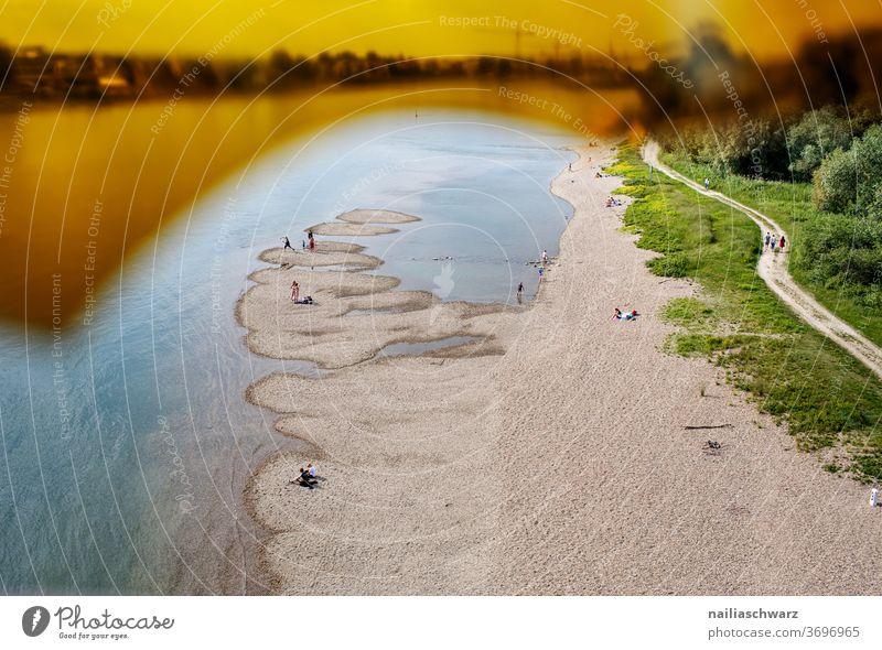 Rhein&Müll ufer Landschaft Landschaftsformen Fluss Flussufer Natur Wege & Pfade Glasscheibe Niedrigwasser Trockenheit Salierbrücke Brücke Farbfoto Urlaub Umwelt