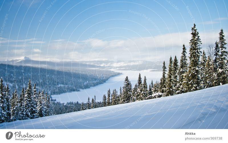 Blick in ein sonniges verschneites Tal, Norwegen Himmel Natur Erholung Einsamkeit Landschaft ruhig Winter Wald kalt Schnee Freiheit See Horizont Stimmung Eis