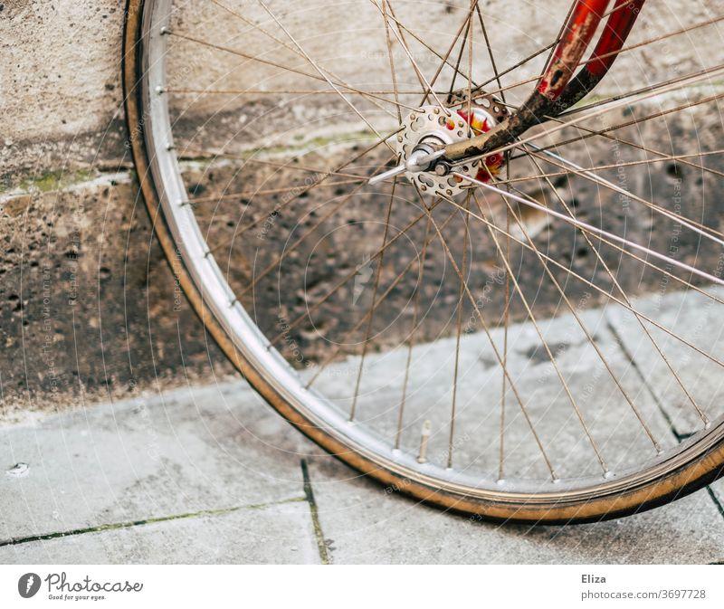 Reifen eines vintage Rennrades Ausschnitt Detail Rad Fahrrad retro Rot gold schön Hipster Verkehrsmittel Fahrradreifen alt Speichen