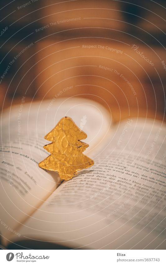 Kleiner goldener Tannenbaum steht auf einem aufgeschlagenen Buch. Weihnachten. Weihnachtsgeschichte lesen Christbaum Weihnachten & Advent Literatur