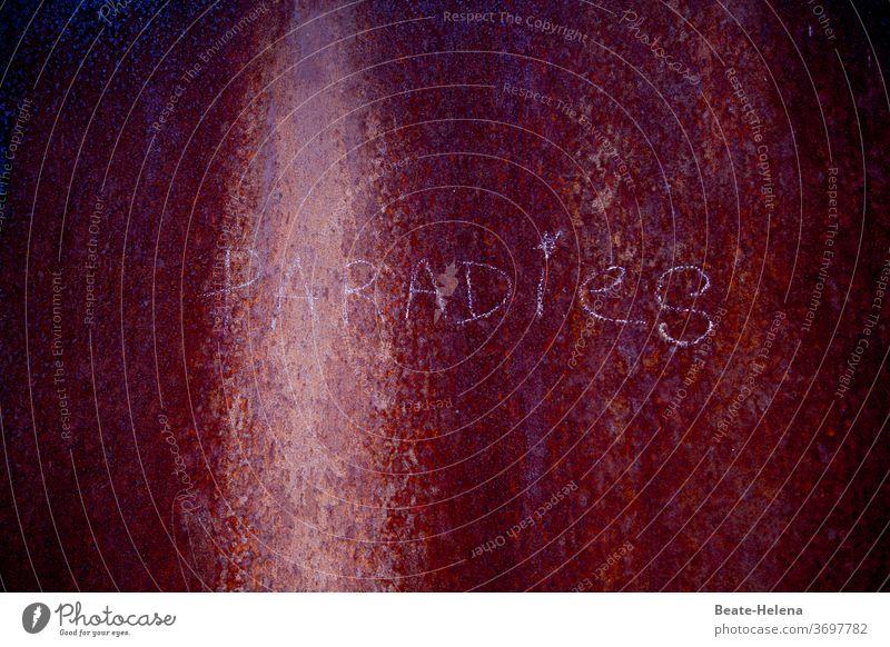 Gegensätze   Dunkle Vorstellung vom Paradies Dunkelheit trüb unergründlich Irrglaube Licht Schatten Außenaufnahme Angst Kontrast Menschenleer Nacht Schriftzug