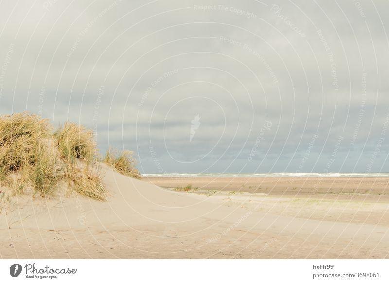stürmisches Wetter am weiten Strand von Skagen Meer stürmische zeiten Küste Sommer Landschaft nass Wasser Ferien & Urlaub & Reisen Erholung ebbe und flut
