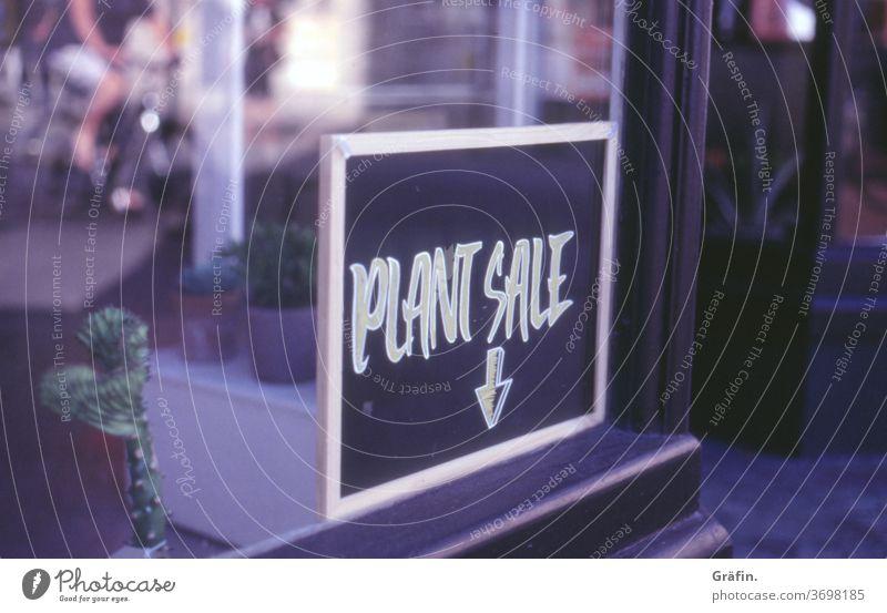 Pflanzenkauf Schilder & Markierungen Schriftzeichen Tafel fenster einkaufen shopping Hinweisschild Verkauf Ladengeschäft Menschenleer Farbfoto Außenaufnahme