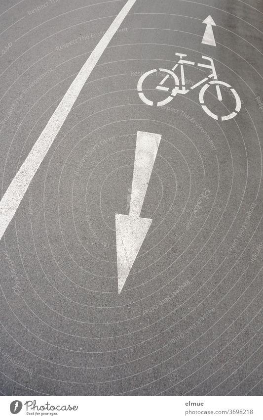 Auf dem grauen, asphaltierten Radweg neben der Straße zeigen weiße Piktogramme von einem Rad und zwei Pfeilen dem Radfahrer an, dass er mit Gegenverkehr rechnen muss