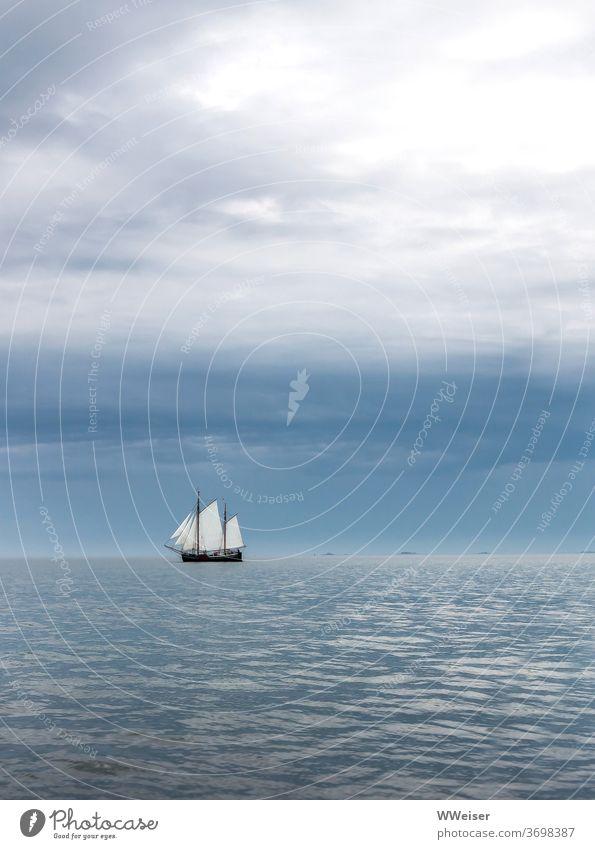 Ein großes Segelschiff am frühen Morgen Horizont Meer See Wellen Himmel Wolken Wasser Urlaub Reisen Ferne Fernweh Freiheit Ferien & Urlaub & Reisen bewölkt Wind