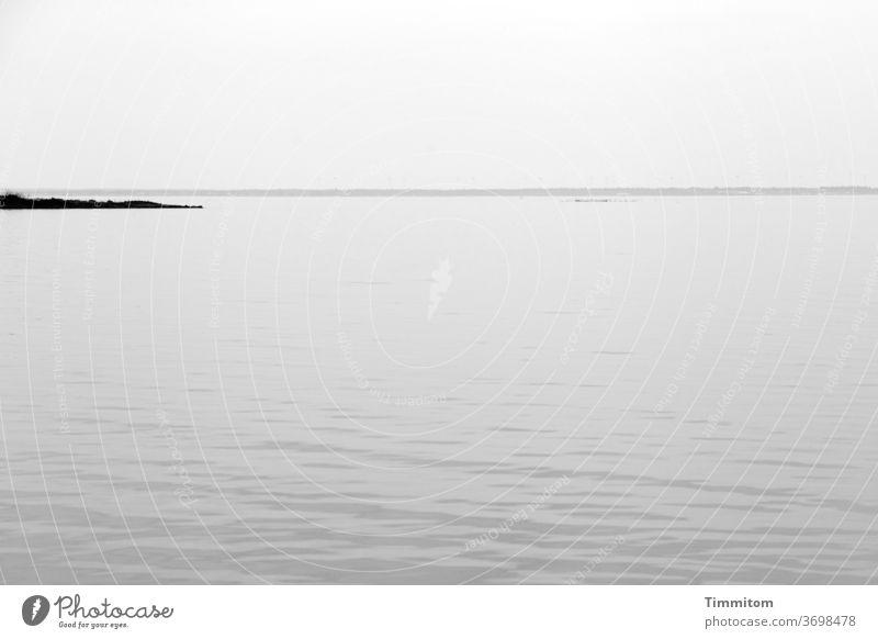 Fjord mit kleiner Landzunge Dänemark Ringkøbingfjord Nordsee Wasser Wellen sanft Horizont Schwarzweißfoto Himmel Menschenleer Ferien & Urlaub & Reisen