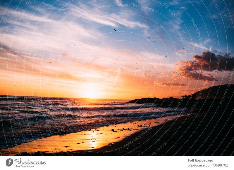 Wellen schlagen gegen den Strand, während Vögel durch den goldenen Himmel schweben & Sonnenuntergang in Ventura, Kalifornien Meer Außenaufnahme Pazifik