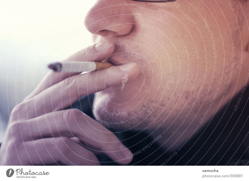 Raucher II Mensch Mann Jugendliche Erwachsene Gesicht Junger Mann Leben 18-30 Jahre Kopf maskulin Finger genießen Rauchen Zigarette Sucht