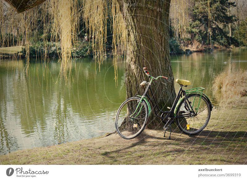 altes Fahrrad unter einem Baum Natur See Teich Freizeit Erholung Park im Freien Aktivität Lifestyle retro Landschaft grün Radfahren Filter Instagramm malerisch