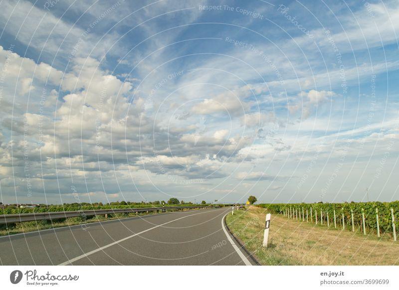 unterwegs in der Pfalz Straße Überholverbot Wolken Himmel Kurve Straßenrand Weinreben Leitplanke Weitwinkel fahren Verkehr Autofahren reisen leer frei Fahrt