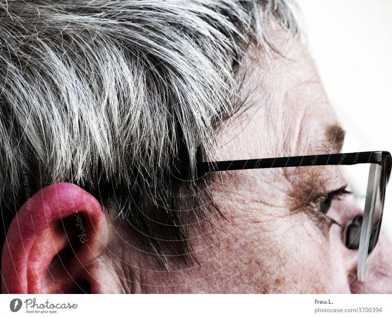 """Die Wespe hatte es sich gerade auf dem Ohr der grauhaarige Frau gemütlich gemacht, da bedrohte sie eine große fuchtelnde Hand – was blieb ihr anderes übrig, als zu stechen, doch bevor sie davonflog, sirrte sie leise """"sorry"""" zum nun rot angeschwollenen Ohr."""