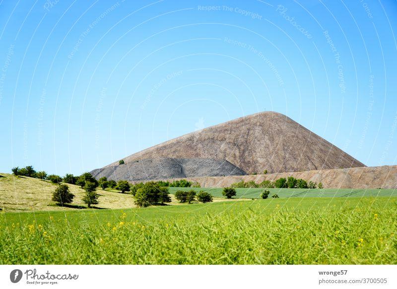 Abraumhalde des Bergbaus im Mansfelder Revier hinter grünen Vordergrund und unter blauen Himmel Bergbaugeschichte Bergbauindustrie Textfreiraum oben