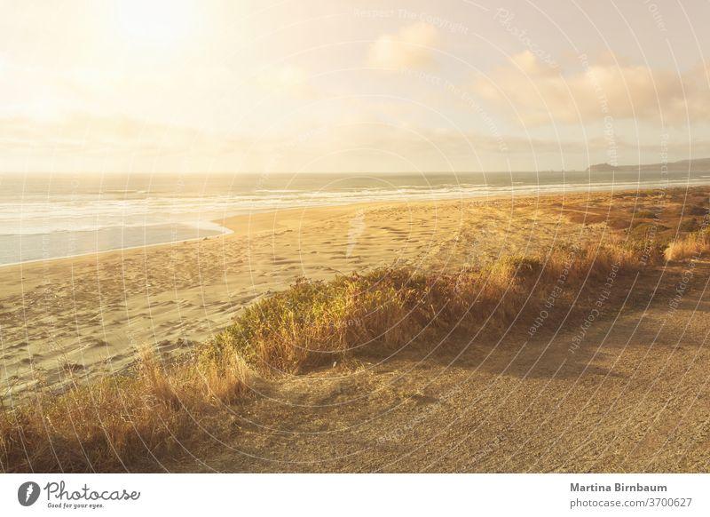 Sommerliche Schwingungen. Endloser, menschenleerer Sandstrand in Nordkalifornien idyllisch Ferien pazifik Kalifornien reisen Sonnenuntergang Strand im Freien