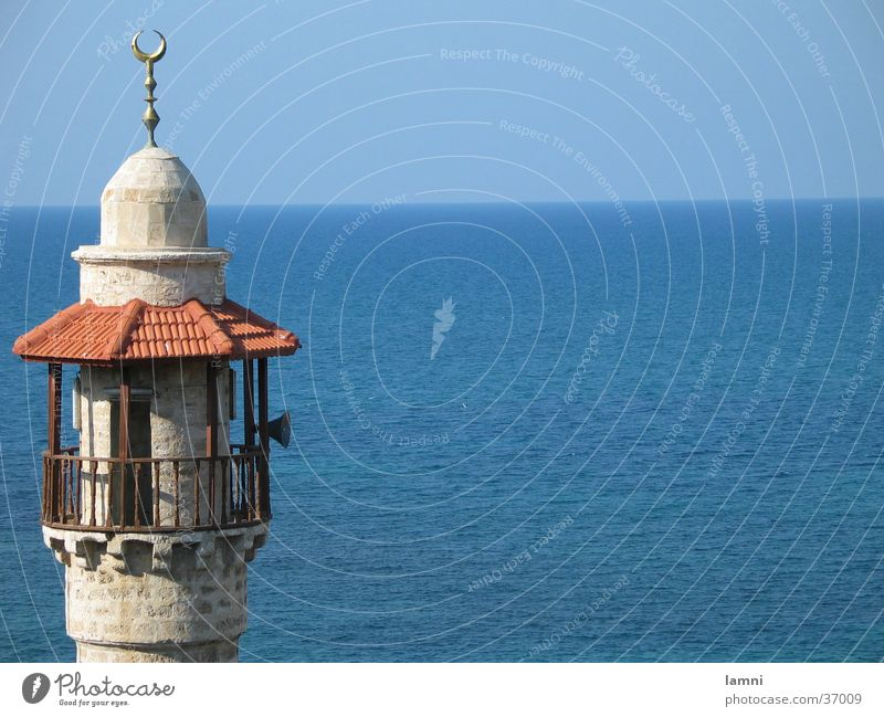 Minarett der Moschee in Alt-Jaffa Meer blau Horizont Israel Islam Moschee Gotteshäuser Minarett Tel Aviv Bitteres Kreuzblümchen