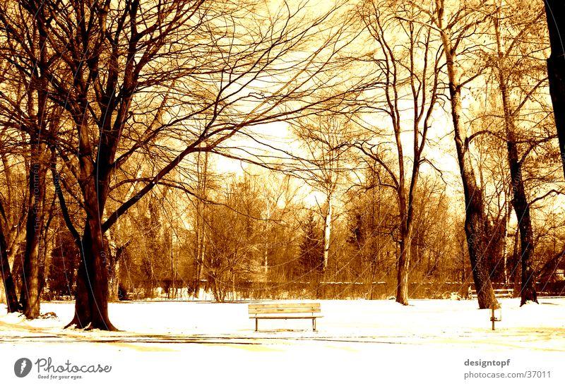aare island Winter Schnee Aarau Aare