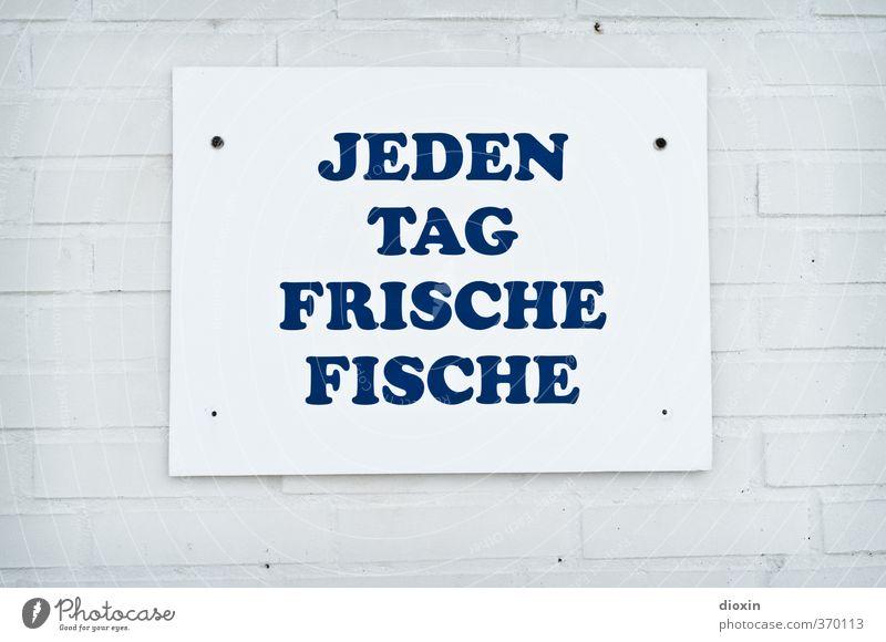 rømø | ...fischt Fischer´s Fritz Wand Mauer Stein Gesundheit Lebensmittel Schilder & Markierungen frisch Schriftzeichen Ernährung genießen lecker