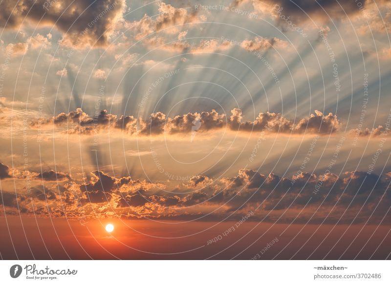 Sonnenaufgang über Berlin Sunset Sonnenstrahlen Himmel Wetter Hauptstadt Farbenfroh pastell Sonnenlicht Schönes Wetter Farbfoto Licht Schatten Wolken