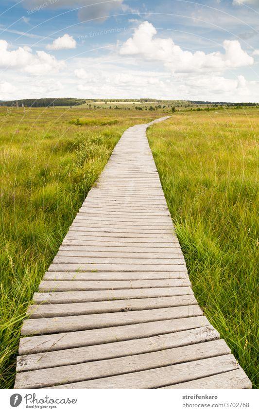 Nur die Wolken am blauen Himmel konnten sehen, wo der scheinbar endlose Holzpfad durch das Moor hinführte Hochmoor Hohes Venn Belgien Naturschutzgebiet